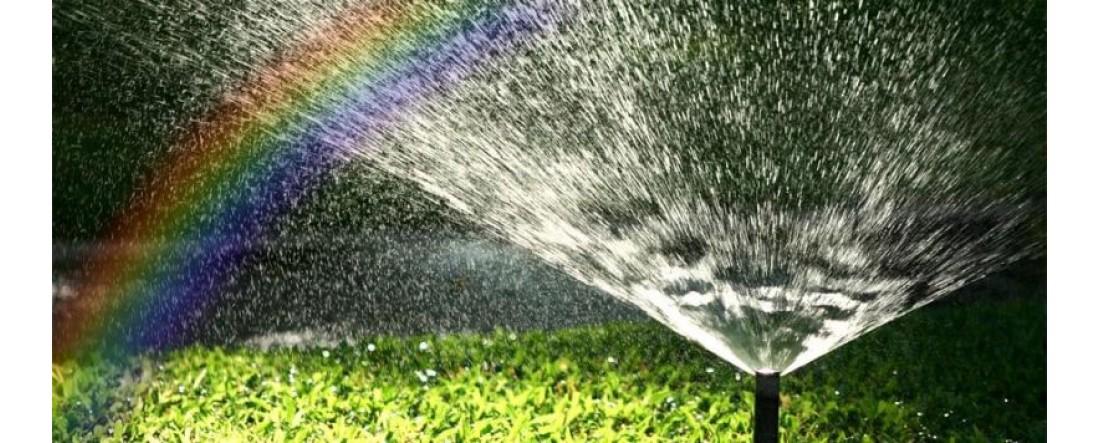 Как правильно сделать полив огорода. Советы и рекомендации. Статья